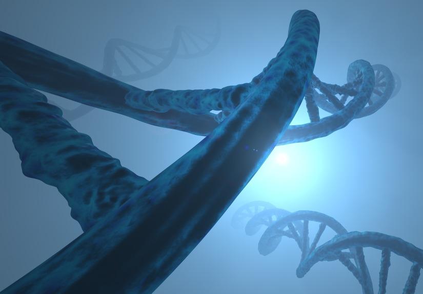 deoxyribonucleic-acid-3171255_1920